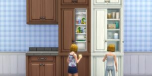 MTS_plasticbox-1582055-scargeaux-cupboardfridge_in-game_01