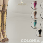 MJ95's Madlen Colonia Shoes