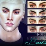 Pralinesims' Eyebrow Bundle N09