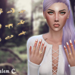 Salem C.'s Jewelry for the fingers