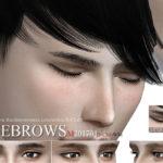 S-Club WM ts4 Eyebrows M 201701