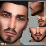 Seleng's Beard N11